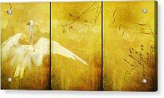 As Birds Fly Up..... Acrylic Print
