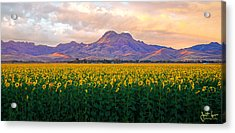 As Far As The Eye Can See  Acrylic Print