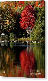 Acrylic Print featuring the photograph As Red As It Can Be by Aimelle