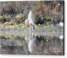 As The Deer IIi Acrylic Print by Daniel Henning
