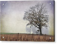As The Fog Sets In Acrylic Print by Jan Amiss Photography