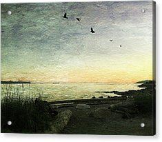 Acrylic Print featuring the photograph As The Sky Darkens  by Connie Handscomb