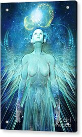 Ascension Acrylic Print