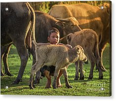 Asian Children And Buffalo At Countryside. Acrylic Print by Tosporn Preede