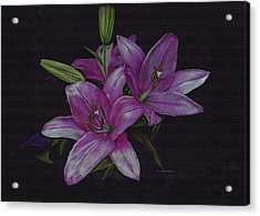 Asian Lillies Acrylic Print