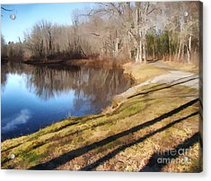 Acrylic Print featuring the photograph Aslant by Betsy Zimmerli