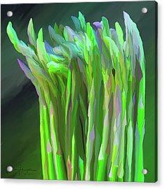Asparagus Study 01 Acrylic Print by Wally Hampton