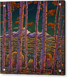 Aspen At Night Acrylic Print by Johnathan Harris