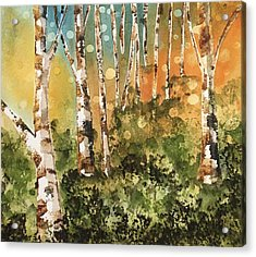 Aspen Dozen Acrylic Print by Deb Babcock
