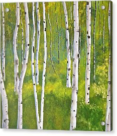 Aspen Forest Acrylic Print by Heather Matthews
