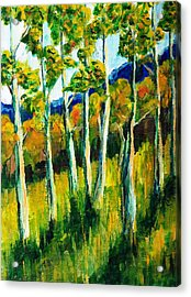 Aspen Highlands Acrylic Print by Randy Sprout