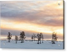 Aspen Hill At Sunset Acrylic Print