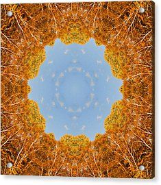 Aspen Kaleidoscope Acrylic Print by Bill Barber