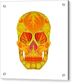 Aspen Leaf Skull 13 Acrylic Print by Agustin Goba
