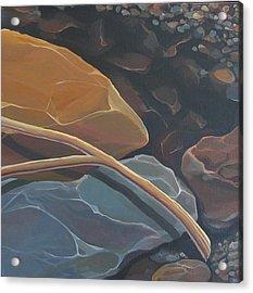 Aspen Rain Branch Acrylic Print