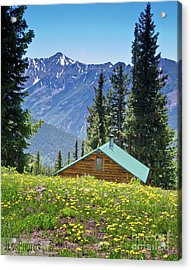 Acrylic Print featuring the photograph Aspen Spring by Jeff Loh