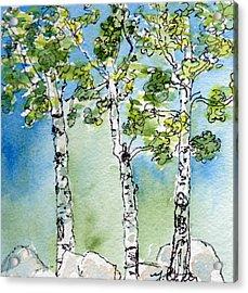 Aspen Trio Acrylic Print by Mary Benke
