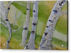 Acrylic Print featuring the painting Aspen Trunks by Beverley Harper Tinsley