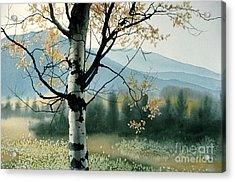 Aspen Valley Acrylic Print