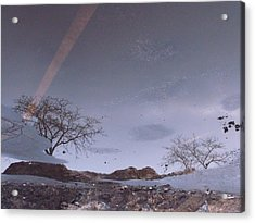 Asphalt Reflection I Acrylic Print by Anna Villarreal Garbis