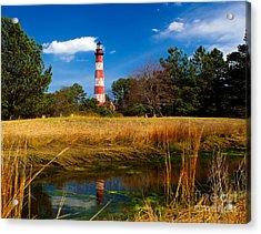 Assateague Lighthouse Reflection Acrylic Print by Nick Zelinsky