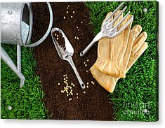 Assortment Of Garden Tools On Earth Acrylic Print by Sandra Cunningham