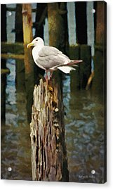 Astoria Waterfront, Scene 2 - Post Posing Acrylic Print by Jeff Kolker