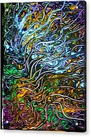 Astral Weeks Acrylic Print by Gayland Morris