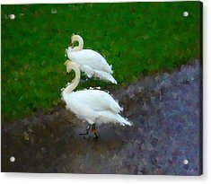 Asymmetry Acrylic Print by Roberto Alamino