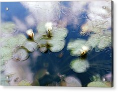 At Claude Monet's Water Garden 4 Acrylic Print
