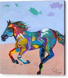 At Full Gallop Acrylic Print by Tracy Miller