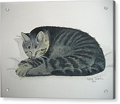 Acrylic Print featuring the painting At Rest by Norm Starks
