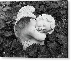 At Rest Acrylic Print