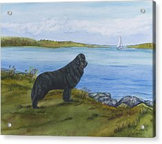 Acrylic Print featuring the painting At Seneca Lake by Sharon Nummer