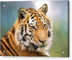 At The Center - Tiger Art Acrylic Print by Jordan Blackstone