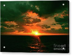 At The Edge Of Night Acrylic Print by Robyn King