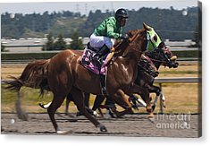 At The Races Acrylic Print by Ronald Hanson