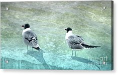 At The Waters Edge Acrylic Print by Judy Hall-Folde