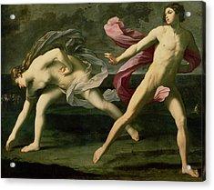 Atalanta And Hippomenes Acrylic Print by Guido Reni