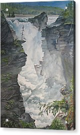 Athabasca Falls Alberta Acrylic Print by Debbie Homewood