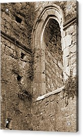 Athassel Priory Ireland Medieval Ruins Arched Window Sepia Acrylic Print by Shawn O'Brien