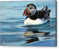 Atlantic Puffin 1 Acrylic Print by Kelly McNeil