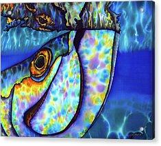 Atlantic Tarpon Fish Acrylic Print