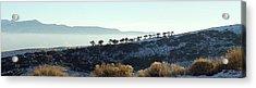 Atop Peavine Mountain Acrylic Print by Edward Hass