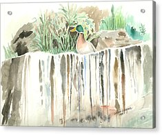 Atop The Waterfall Acrylic Print by Arline Wagner