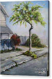 Atree Grows In Eureka Acrylic Print