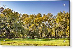 Audubon Park New Orleans Acrylic Print