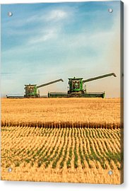 Augers Out Acrylic Print by Todd Klassy