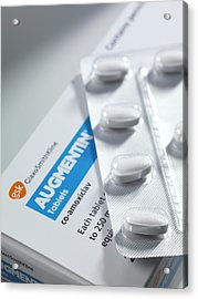 Augmentin Antibiotic Pills Acrylic Print by Tek Image