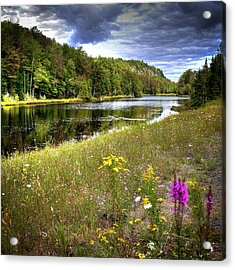 Acrylic Print featuring the photograph August Flowers On The Pond by David Patterson